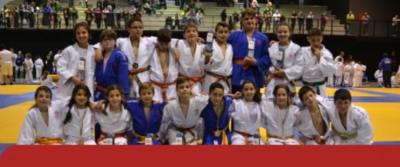 Buen nivel de Judo en la final Alevín